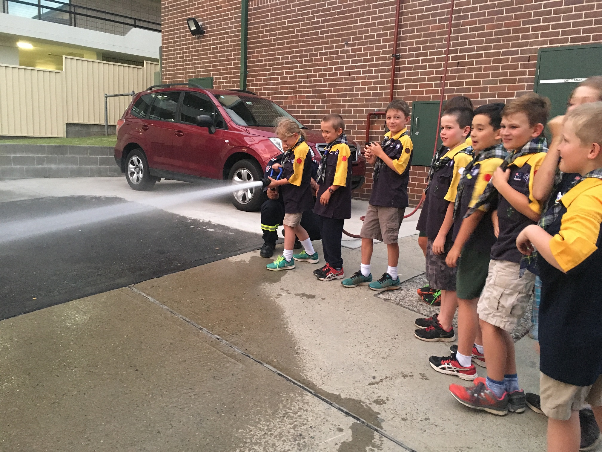 Cubs having a turn on a fire hose!
